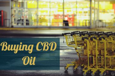 Buying CBD Oil