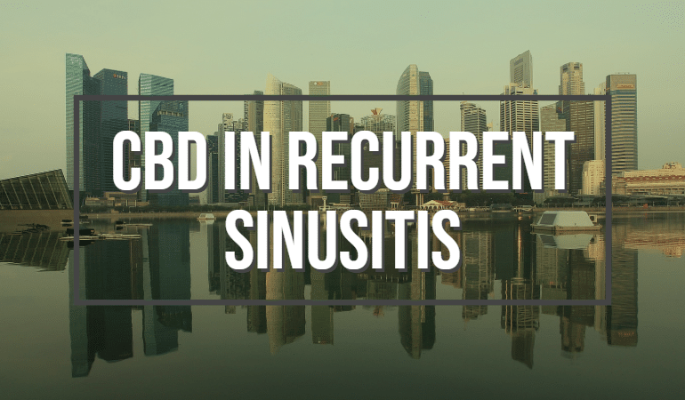 CBD In Recurrent Sinusitis